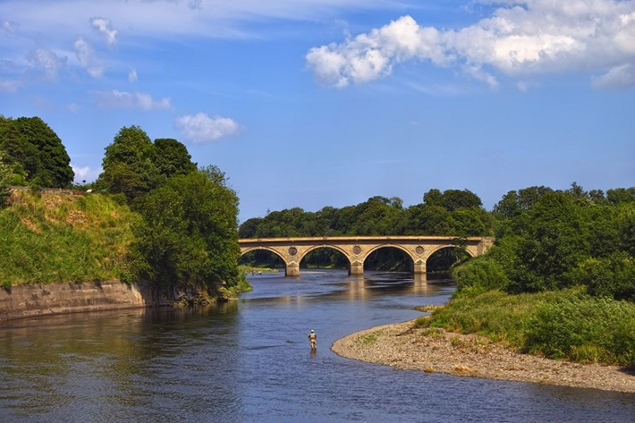 River Tweed - Coldstream