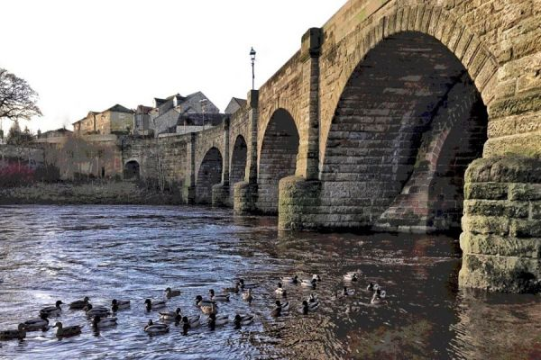 River Wharfe - Wetherby Bridge