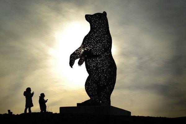 John Muir - Bear - Dunbar